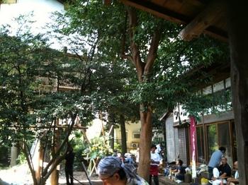 縁側とツリーハウス.jpg